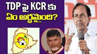 TDP పై KCR కు ఏం అర్థమైంది?||Prof K Nageshwar on how KCR understood TDP||