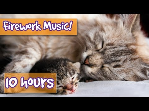 Music to Help Relax Your Cat from Fireworks, Loud noises, Parties - Help Frightened cat stay safe