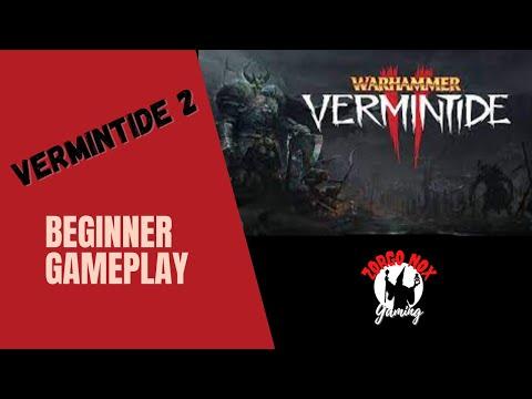 Warhammer  Vermintide 2 2021: Bright Wizard Early Gameplay |