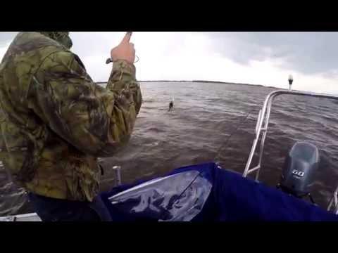 ловля на жерлицы на озере ильмень