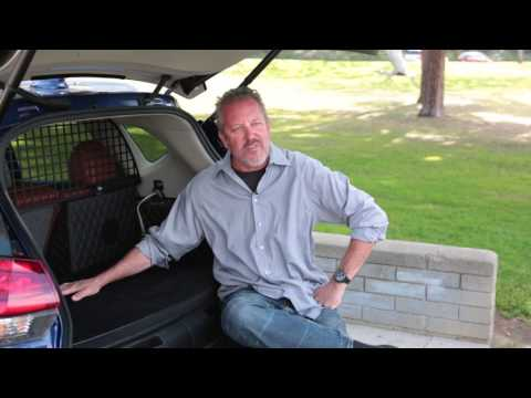 Nissan - Interview with Dennis McCarthy Rogue Dogue project leader, dog owner | AutoMotoTV