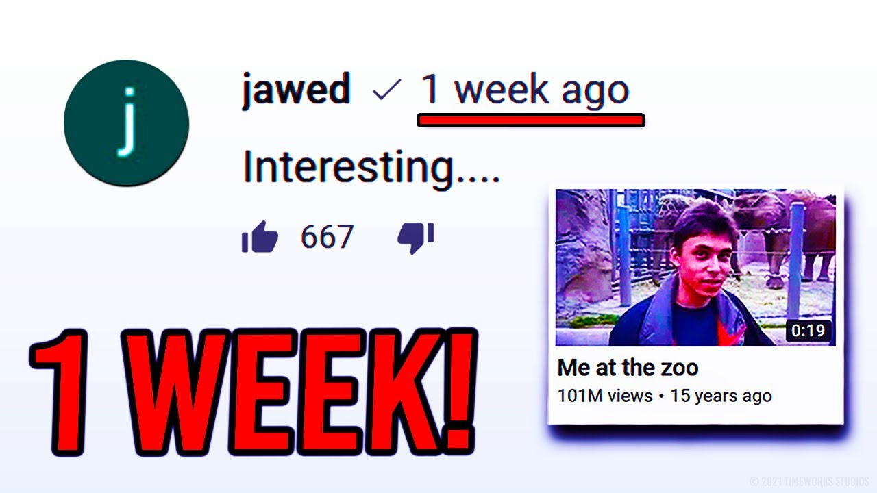 Jawed Posted A NEW Comment On YouTube? (why?)