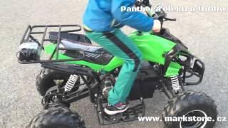 Panthera 1000w