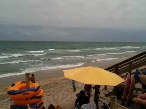 Movie Palm Beach