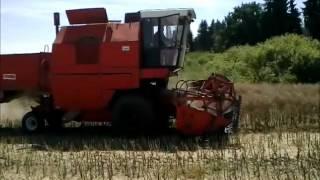 Zniwa 2012-rzepak cz,2 2x bizon rekord