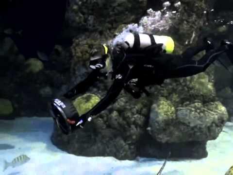 BladeFish 7000 Turbo - Subacquea