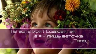Ксения и Виталий Лапицкие. Лоза