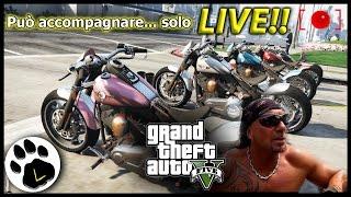 LIVE GTA V Online Il Delirio TOTALE PARTE 3 ITA Il Degenero Può Accompagnare Solo