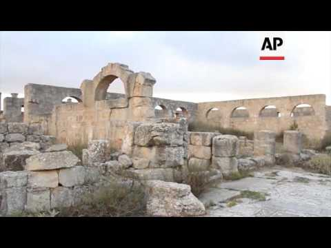 Local expert wants ancient city removed from danger list