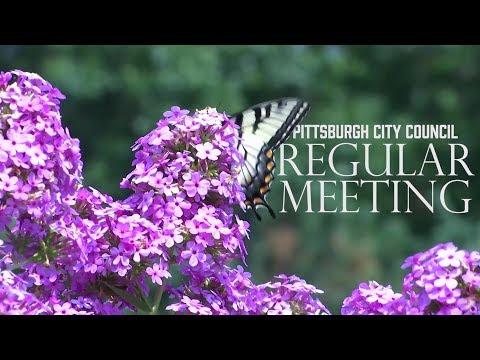 Pittsburgh City Council Regular Meeting - 1/15/19