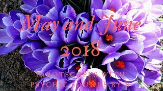 Video Taurus May and June 2018 ~ Happy Birthday Taurus!  UNSTOPPABLE! download MP3, 3GP, MP4, WEBM, AVI, FLV April 2018