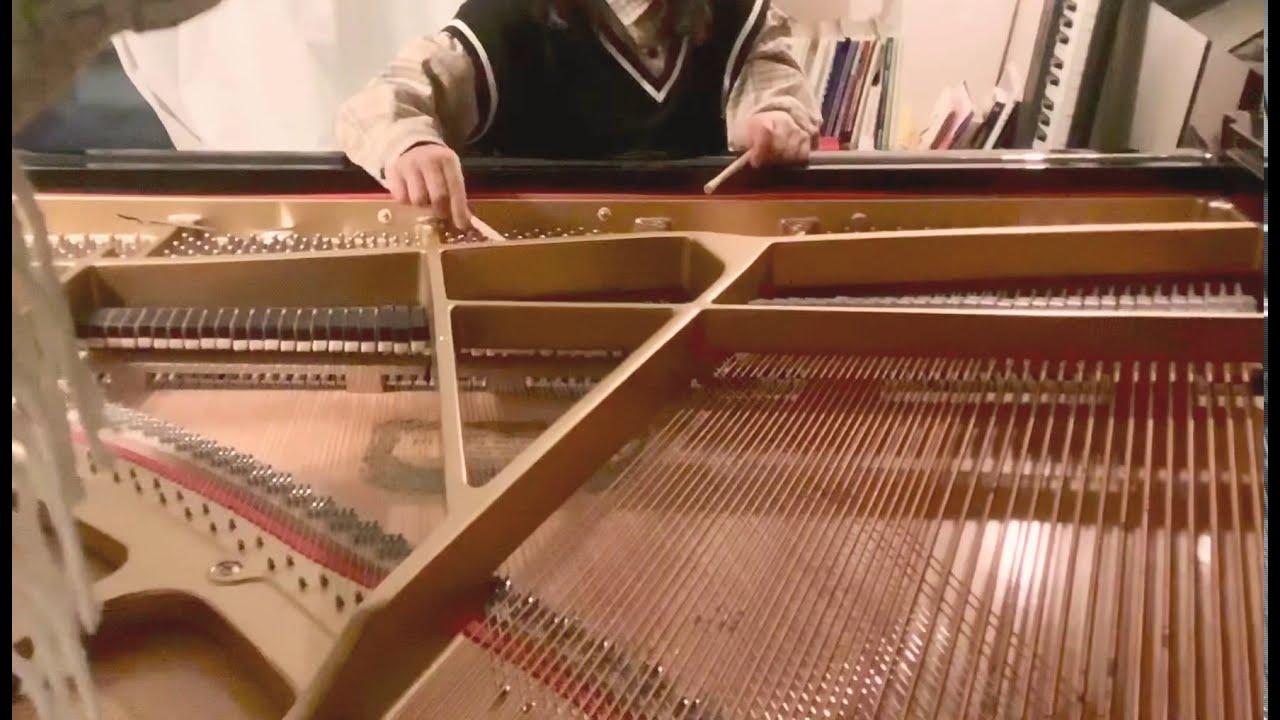 いろんなピアノの演奏法