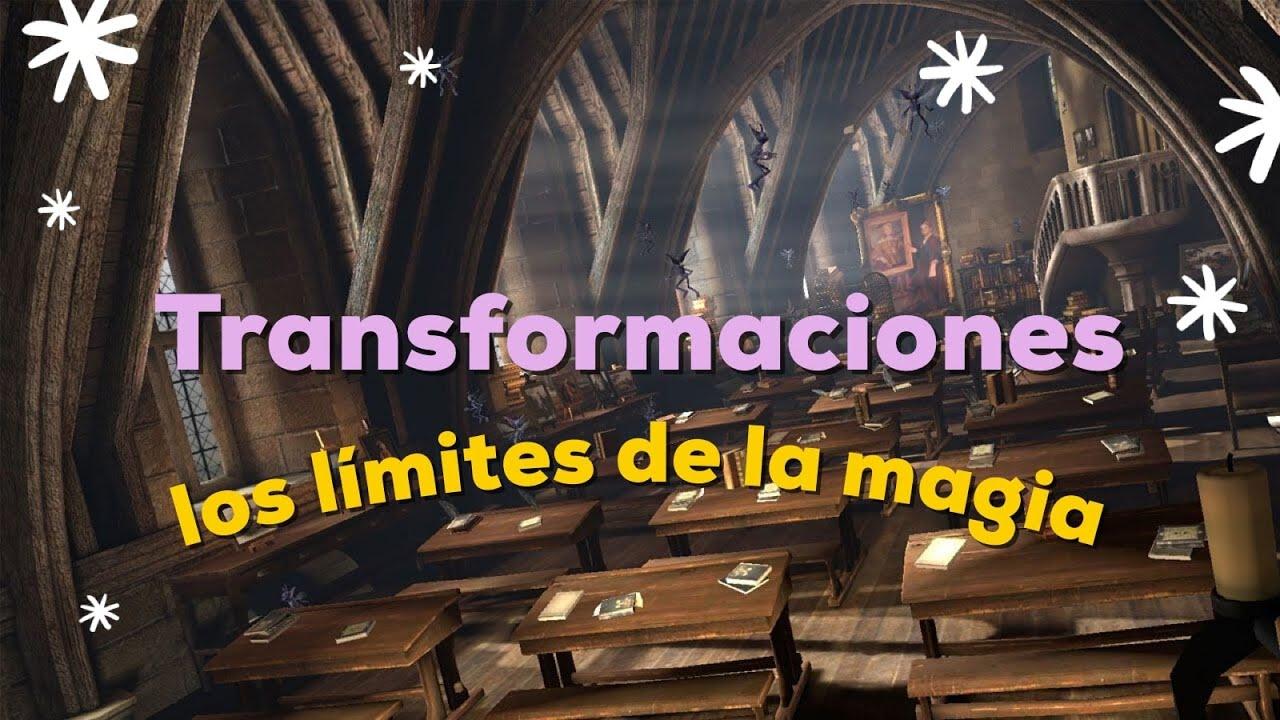 Cuáles son las LEYES DE GAMP y excepciones de la MAGIA - Clases de Magia y Hechicería   Porexpan