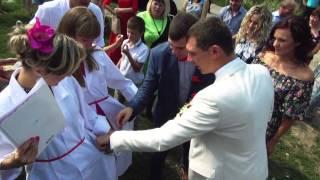 видео Сценарий выкупа невесты в медицинском стиле