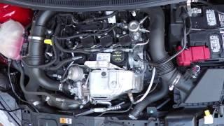 Ford 1.0L Ecoboost 3-Cylinder startup and revving