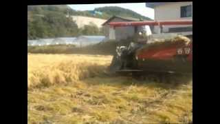 mesin potong padi langsung perontok