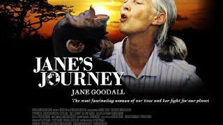 Le long voyage de Jane Goodall (Bande annonce officielle) !
