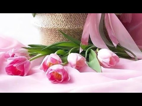 wallpaper flowers photo .images roses .wallpaper photos .flowers wallpaper .photos profile flowers