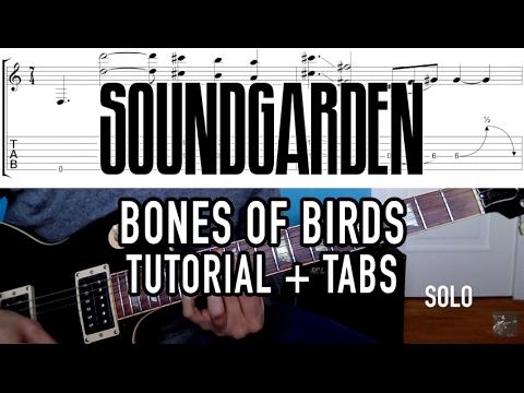 Bones of Birds - Soundgarden (4 min. Tutorial + Tab)