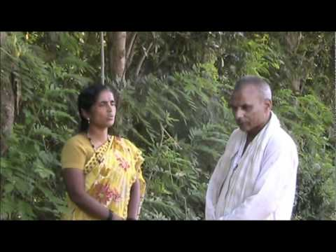 Curry leaf cultivation Kannada BAIF Karnataka
