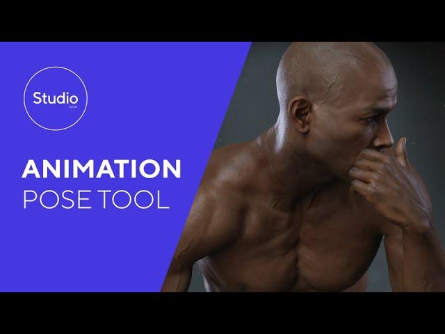 Daz 1.4: Animation Pose Tool