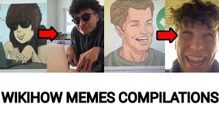 WIKIHOW MEMES / TIĶTOK COMPILATIONS