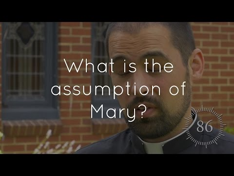 42. What is the Assumption of Mary?