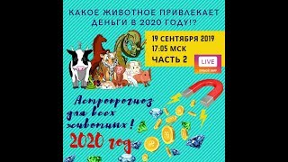Астропрогноз 2020 каждого животного КИТАЙСКОГО КАЛЕНДАРЯ + секретный ритуал!