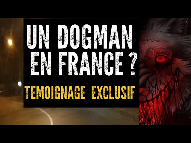 UN DOGMAN EN FRANCE ?! 😱🐺 TÉMOIGNAGE EXCLUSIF