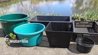 Обзор контейнеров для посадки водяной лилии