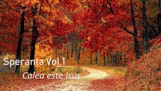 Speranta - Calea este Isus - Marius Gorcea