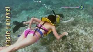 Snorkel en Cancún (Snorkel Básico)