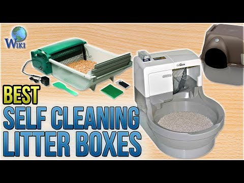 7 Best Self Cleaning Litter Boxes 2018