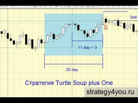 стратегия черепаховый суп видео