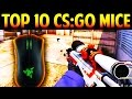 Top 10 Mice for CS:GO