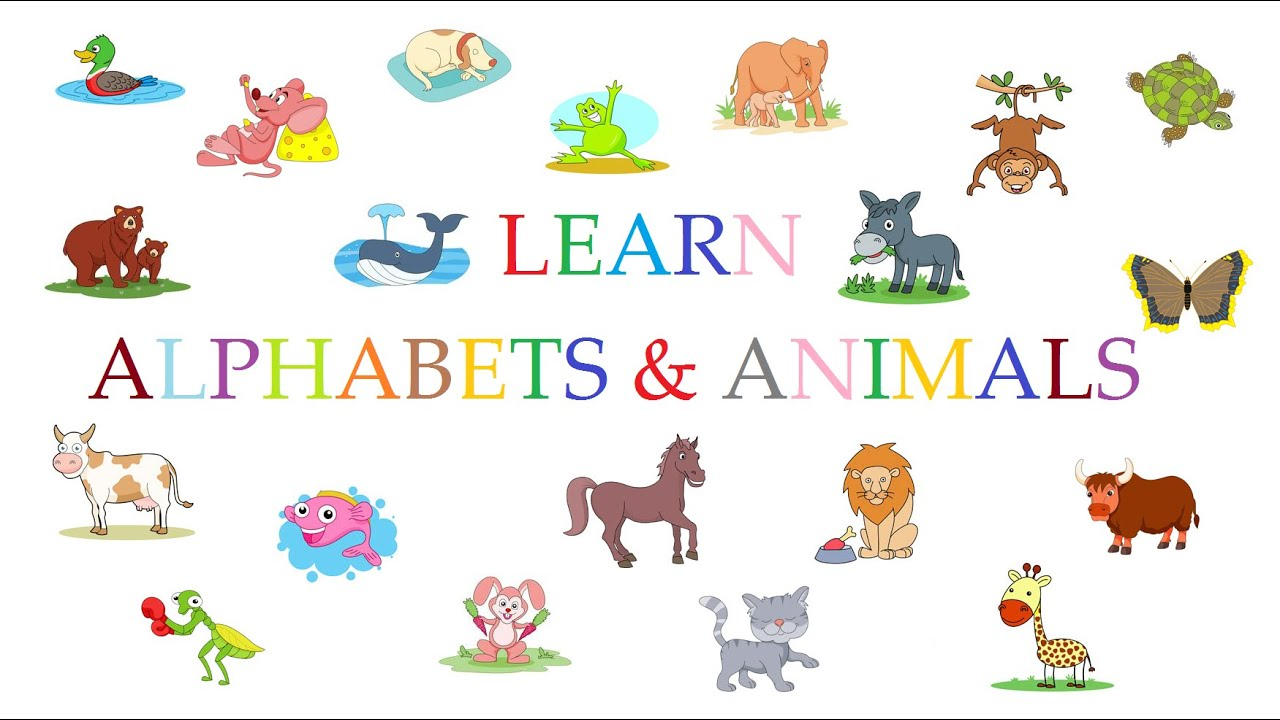 Learn the ABC | Animals Alphabet A to Z | ABC Songs for ...