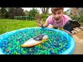 RC BOAT VS ORBEEZ SWIMMING POOL!!