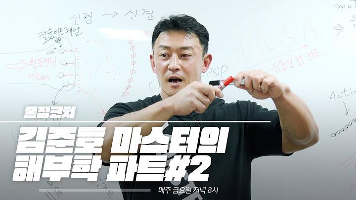 '해부학의 모든 것' 김준호 마스터의 해부학 파트#2 [몬스터짐 코치]