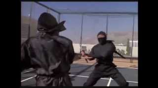 Revenge of The Ninja: Final Ninja Fight