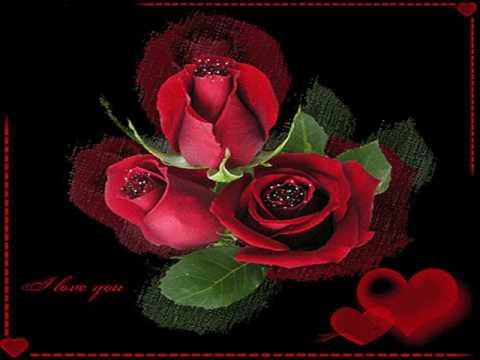freddy breck rote rosen youtube. Black Bedroom Furniture Sets. Home Design Ideas