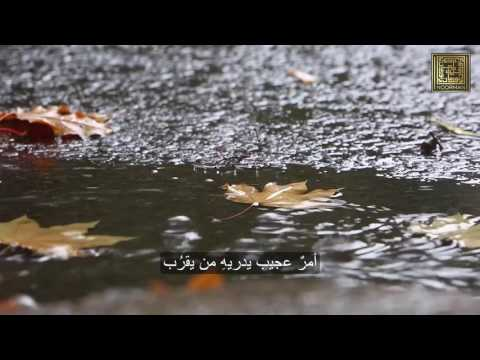 Sufi Samaa | سماع صوفي | Nature HD  | New with Sub Ar
