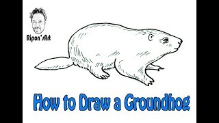 How to Draw a Groundhog  easy | Ripon