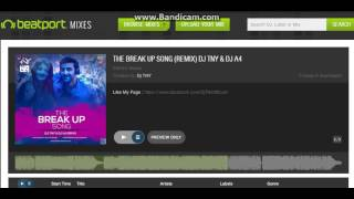 The Break Up Song | Remix | Dj TNY & Dj A4