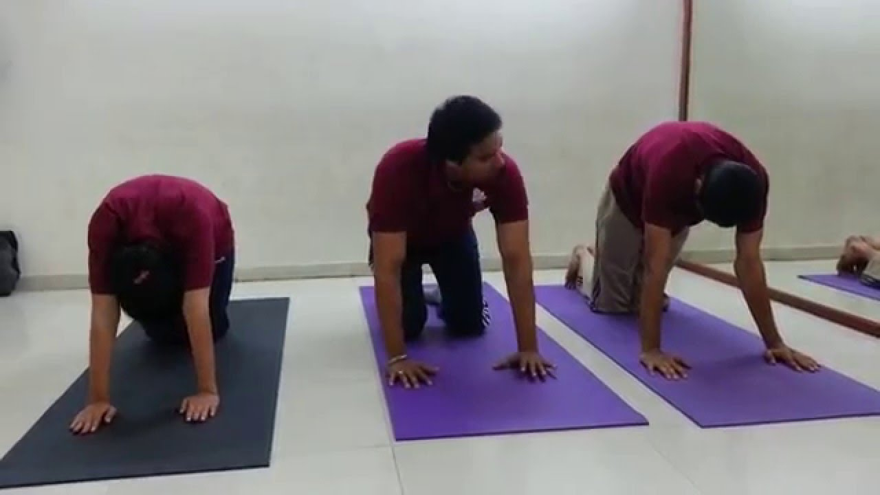 Back Pain Relief exercises in hindi