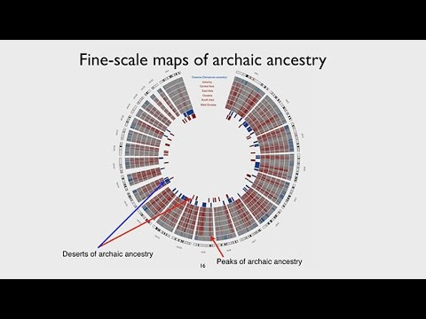 CARTA: Ancient DNA and Human Evolution – The Landscape of Archaic Ancestry in Modern Humans