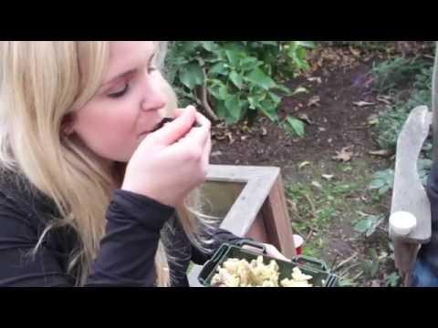 Green Traveler Video1