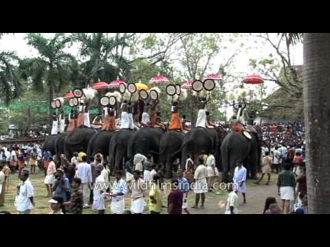 Thrissur Pooram festival draws foreign tourists to India