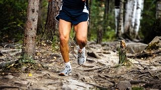 legs running athletes on large stones in forest