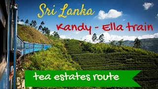 Sr Lanka by TRAIN: TEA ESTATES