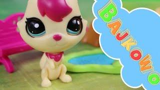 Zabawa w chowanego | Littlest Pet Shop | Bajki dla dzieci